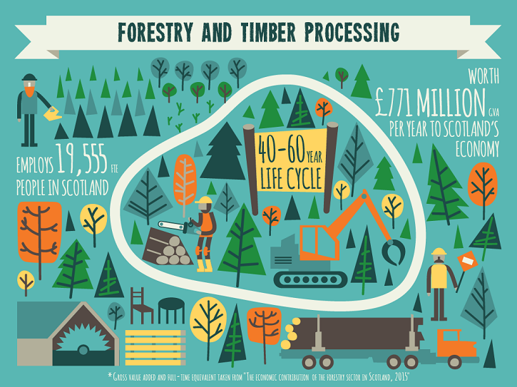Forestry Commission Infographic